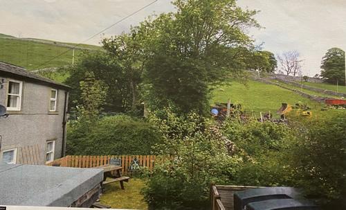 pre renovation garden