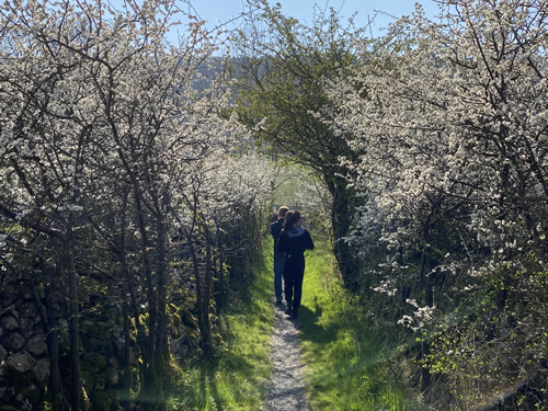 kettlewell walk lovers lane